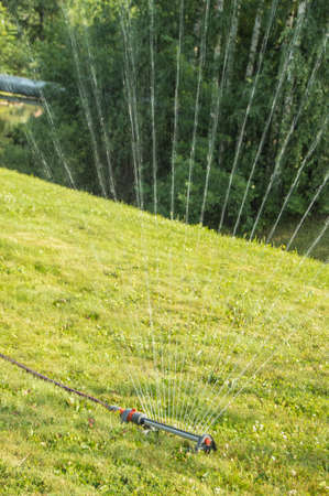 A lawn sprinkler sprays water on the green grass growing on the hillside. Modern irrigation system on a sunny summer day in the open air