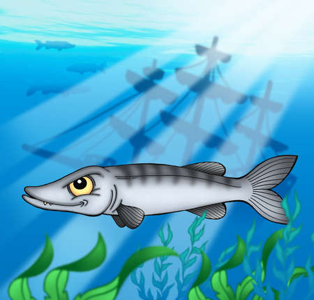 barracuda: Barracuda with shipwreck - color illustration. Stock Photo