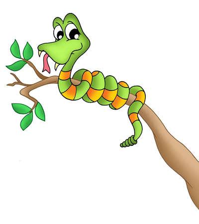 snake eyes: Snake on branch - color illustration.