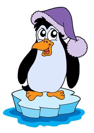 aquatic bird: penguin on iceberg - vector illustration.