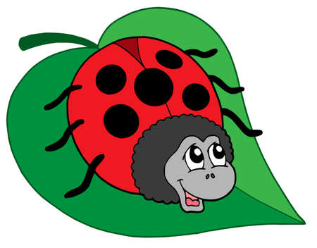 Cute ladybug on leaf - vector illustration.