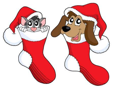 Cute cat and dog in Christmas socks - vector illustration. Illustration