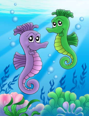 caballo de mar: Par de caballitos de mar - color ilustraci�n.  Foto de archivo