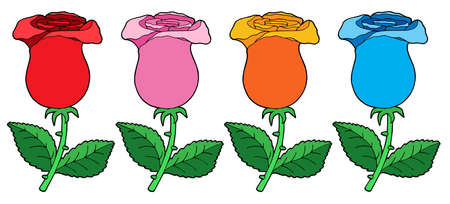 blossoming: Various color roses collection - vector illustration.