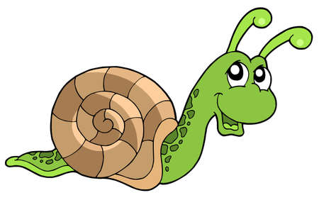 Cute snail on white background - vector illustration.