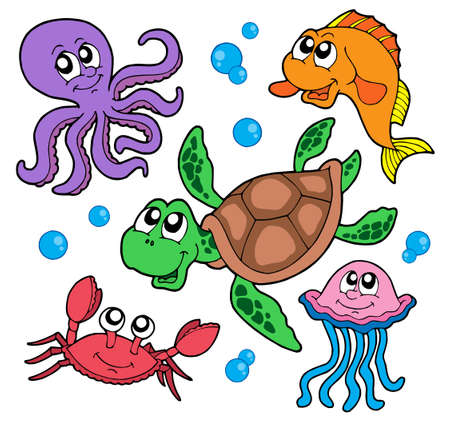 Marine animals collection - vector illustration. Vector