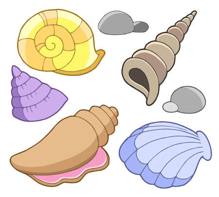 Sea shells collection - vector illustration.