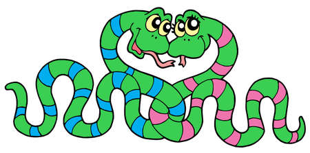Pair of snakes in  - vector illustration. Vector