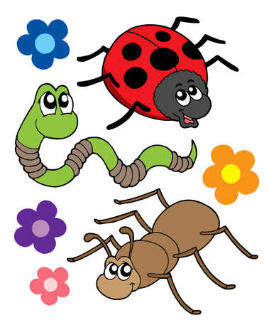 regenworm: Diverse bugs collectie - vector illustration.