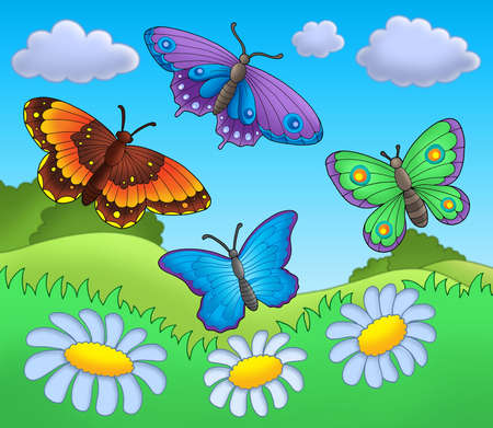 butterfly flower: Butterflies on meadow - color illustration.