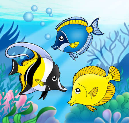 bubble sea anemone: Coral fish collection in sea - color illustration. Stock Photo