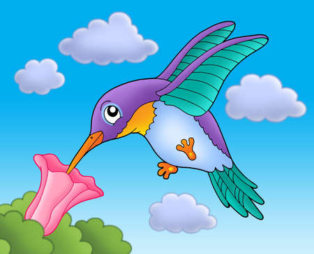 Humming bird with pink flower - color illustration. Stock Illustration - 3403239