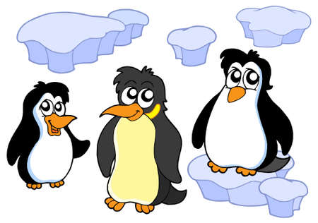 Penguins collection on white background - vector illustration. Vector