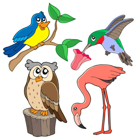 Various birds collection 02 - vector illustration.