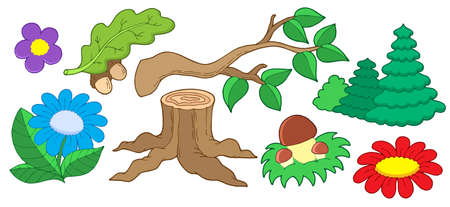 broadleaved tree: Tree and flower collection - vector illustration.