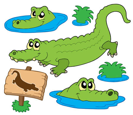 reptil: Crocodile collection on white background - vector illustration.