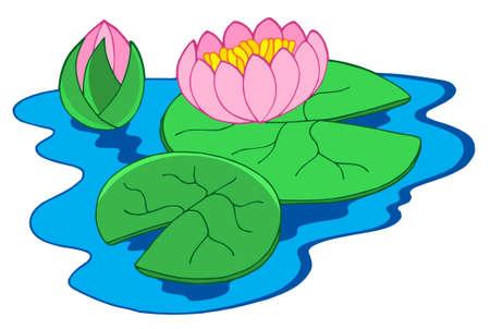 кувшинка: Pink water lilies - vector illustration.