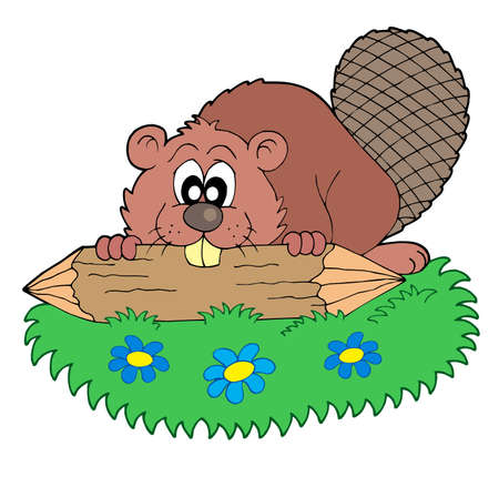 castor: Beaver con log - ilustraci�n vectorial.