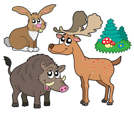 woodland: Forest animals collection 1 - vector illustration.