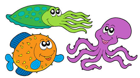 species: Marine species collection - vector illustration.