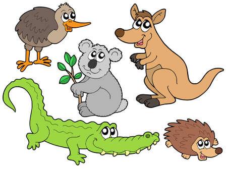 animal pouch: Australian animals collection - vector illustration. Illustration