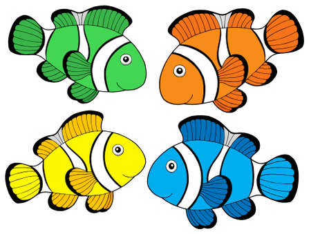 colorful fishes: Various color clownfishes 1 - vector illustration. Illustration