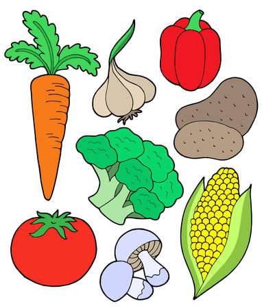 Vegetable collection on white background - vector illustration. Vector