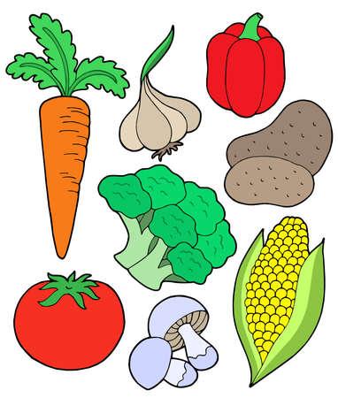 planta de maiz: Vegetales recogida en el fondo blanco - ilustraci�n vectorial.