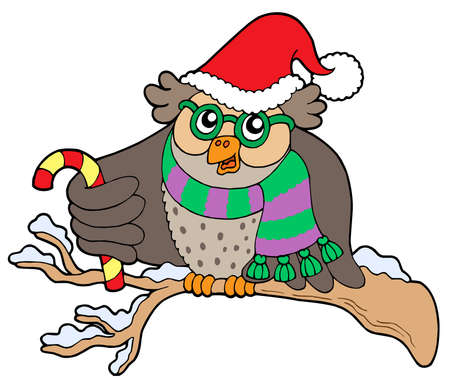 Owl in Christmas outfit - vector illustration. Vector