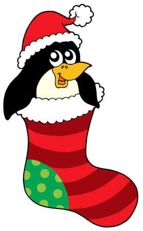christmas sock: Pinguino in calza di Natale - illustrazione vettoriale.