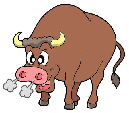 Angry bull on white background - vector illustration.