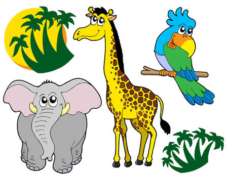 jungle vector: African animals collection 3 - vector illustration.