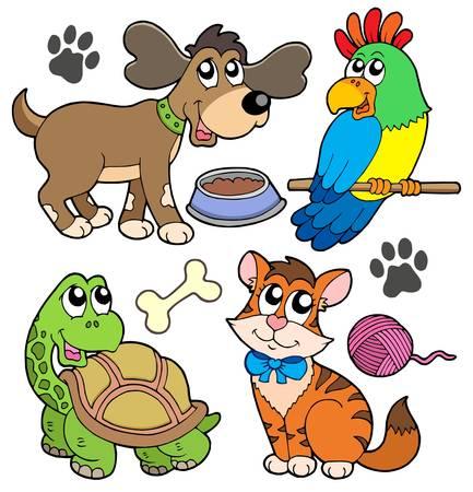 Recogida de animales de compañía - ilustración vectorial.