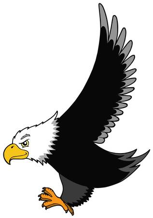 eagle feather: Flying American eagle - vector illustration.