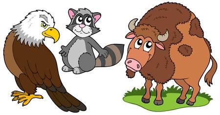 North American animals collection - vector illustration. Vector