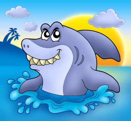 Cartoon shark with sunset - color illustration. Stock Photo