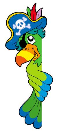 buccaneer: Lurking pirate parrot - vector illustration. Illustration