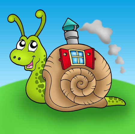 salyangoz: Snail with shell house on meadow - color illustration.