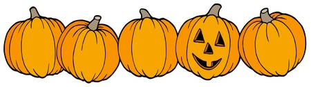 Line of pumpkins - vector illustration.