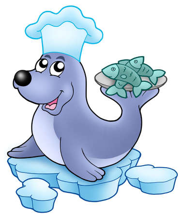 aquatic life: Seal chef with fishes - color illustration.