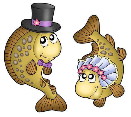 pez carpa: De boda con carpas cute - ilustraci�n en color.