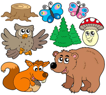 Forest animals collection 3 - vector illustration. Vector