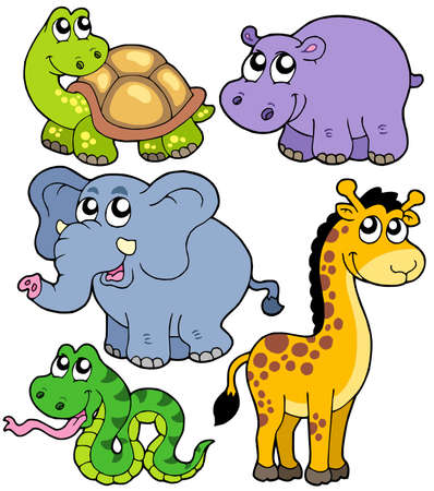 cartoon turtle: African animals collection 4 Illustration