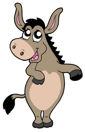 domesticated: Funny donkey on white background - vector illustration.