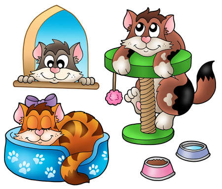 Cute cats collection - color illustration. illustration