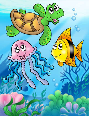 jelly fish: Various sea fishes and animals - color illustration. Stock Photo