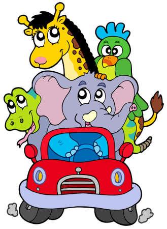 Animales africanos en coche rojo - ilustración vectorial.