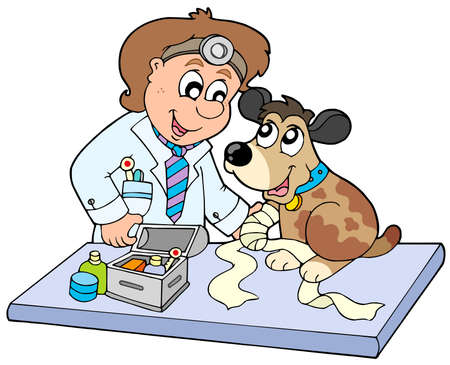 veterinarians: Dog with sick paw at veterinarian - vector illustration.