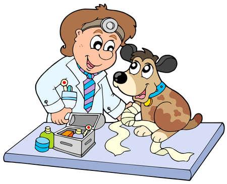 Cane con malato zampa al veterinario - illustrazione vettoriale.
