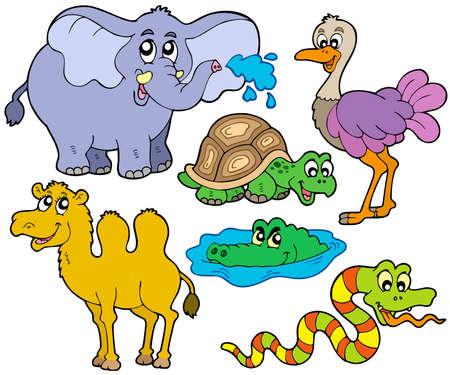Tropische dieren collectie - vector afbeelding.